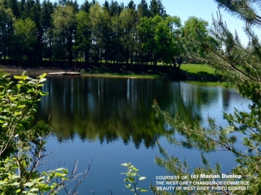 bwg_lakeinspring_md_copy