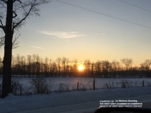 bwg_sunsgoing_md