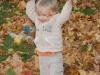 bwg_fun with fall