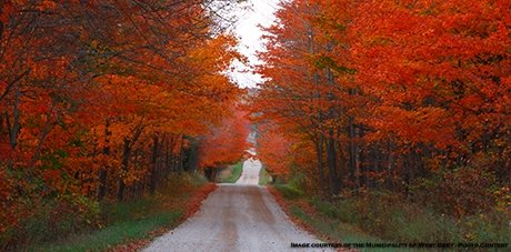 Seasons-Fall-West-Grey-460pix