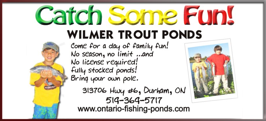 Wilmer Trout Directory 920 420